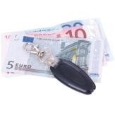 DL 101 Geldscheinprüfer